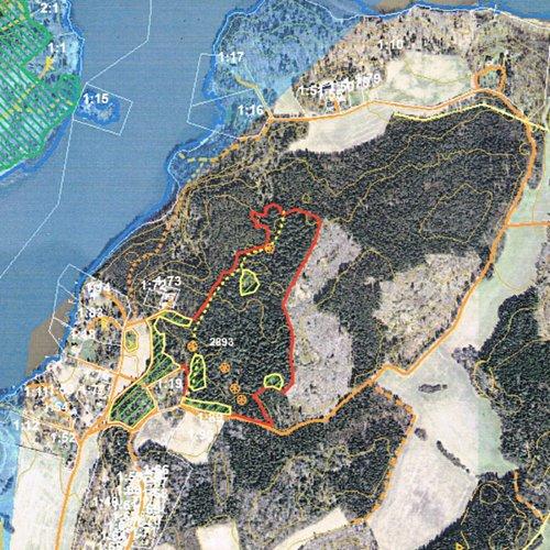 Skogsavverkning 2014-2015